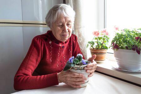Portrait of smiling senior woman Stock fotó