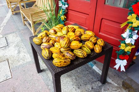 The fresh cocoa fruits at Port Limon - seaport in Costa Rica.