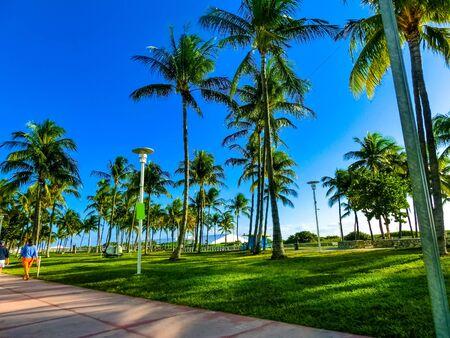 Beautiful street of Ocean Drive at Miami beach. 免版税图像
