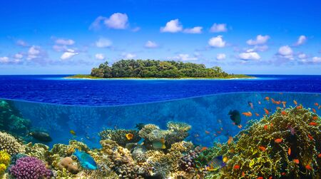 Beautiful sunny tropical beach on the island paradise and underwater world with coral fishes.