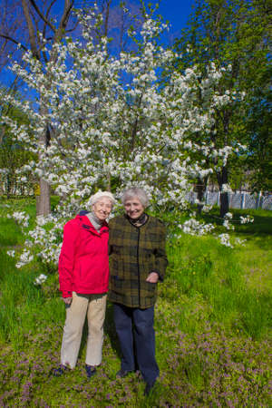 Portrait of a two smiling elderly women. A photo on the nature park background at spring