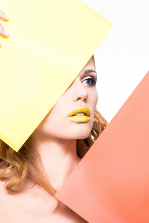 model on a white background with yellow and red plate