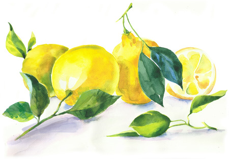 Yellow Lemons Hand Painted Watercolor Illustration isolated on white background Stock Photo