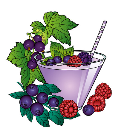 blueberries: Smoothies with raspberries and blueberries vector illustration