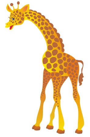 Giraffe Stock Vector - 16258513