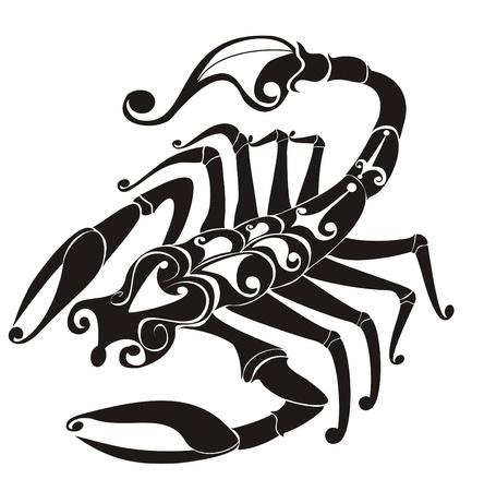 Scorpio  Vector zodiac Vector