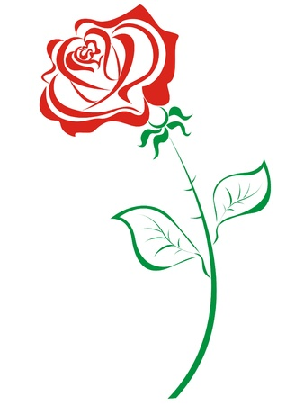 thorns and roses: Stylized red roses isolated on white background Illustration