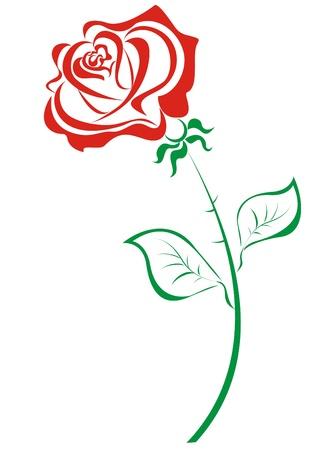 Stylized red roses isolated on white background Illustration