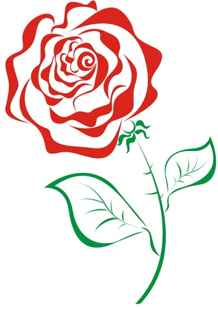 rose stem: Stylized red roses isolated on white background Illustration