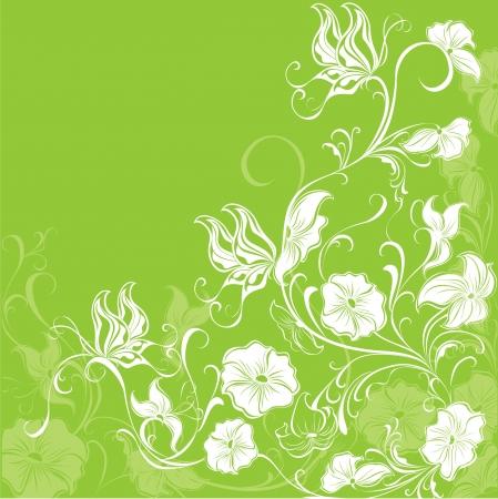 copy spase: Floral background,illustration Illustration