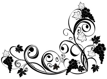vine art: Grapevine. Wine design elements.