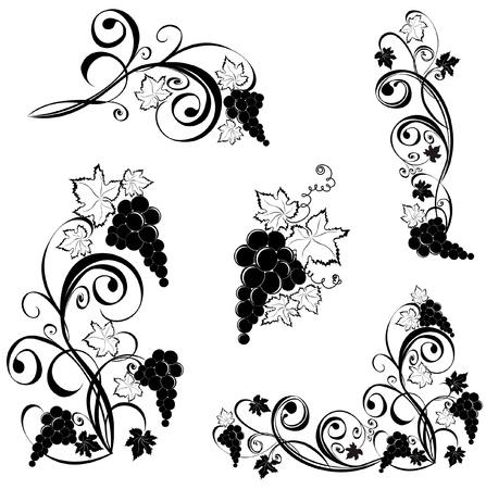 Grapevine. Wijn design elementen. Vector Illustratie