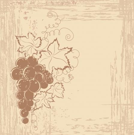 grape crop: Grapes branch on vintage background  Illustration