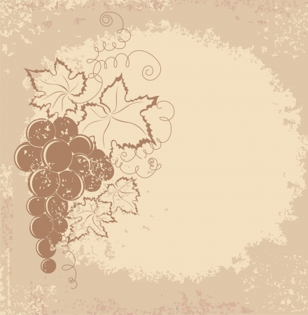 Grapes branch on vintage background  Vector