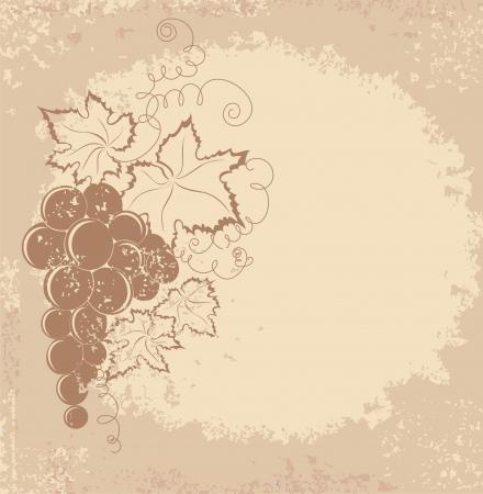 winemaking: Grapes branch on vintage background  Illustration