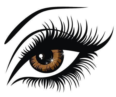 ojos caricatura: Ilustración vectorial hermoso ojo marrón femenino