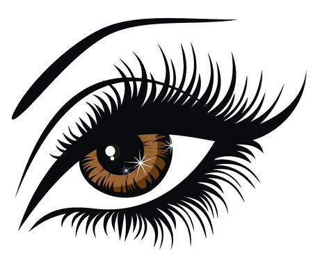 sexy black girl: Vector illustration beautiful female brown eye