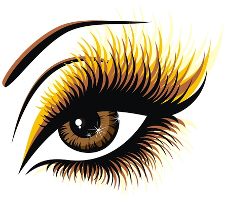 eyelashes: Beautiful female brown eye