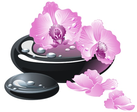 oriental medicine: Spa stones with flowers orchid Illustration
