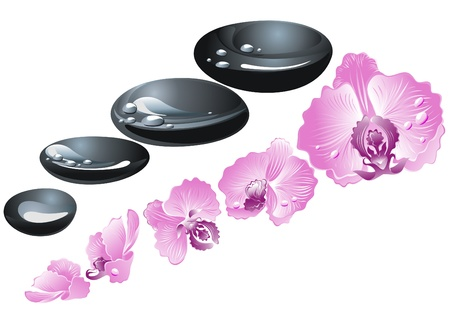meditation stones: Spa stones with flowers orchid Illustration