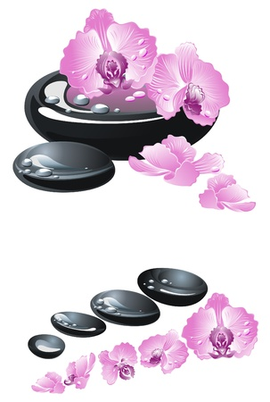 Spa stones with flowers orchid Stock Vector - 17474746
