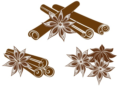 Star anise with Cinnamon sticks isolated on white  Vector