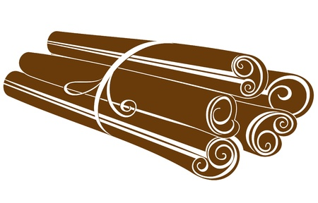 cinnamon sticks: Cinnamon sticks on white  Illustration