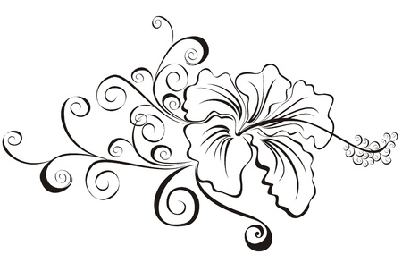 tatouage fleur: illustration vectorielle hibiscus