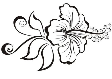 silhouette fleur: illustration vectorielle hibiscus