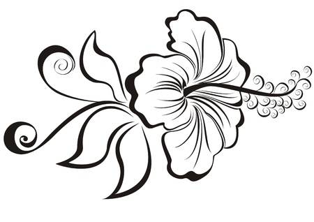 flower tattoo: vector illustration hibiscus  Illustration
