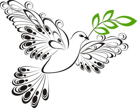 paloma caricatura: Dove Vector pizca Símbolo rama de olivo de la paz y la unidad Vectores