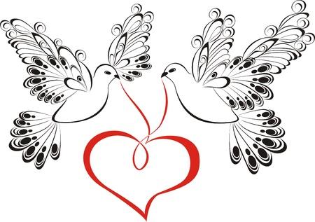 paloma blanca: Dos palomas del amor con el corazón Vectores