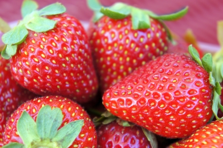 Fresh ripe strawberries photo