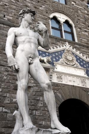 marbles close up: Micheangelo s David at the entrance of Pallazzo Vecchio, Palazzo della Signoria, Florence, Italy