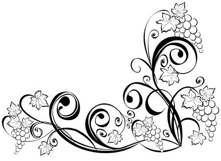 vine art: Grapevine. Wine black and white design elements. Illustration