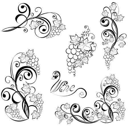 Grapevine. Wein-Schwarz-Weiß-Design-Elemente.