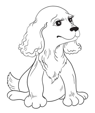 pup: Cute puppy