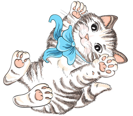 Kitty with bow  Vector hand drawing Vector