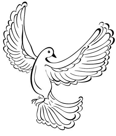 paloma blanca: Ilustraci�n vectorial de paloma volando