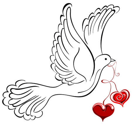 birds silhouette: Vector dove with heart shaped