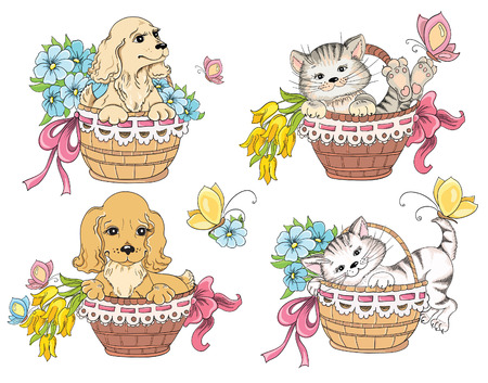 Cat and dog in basket. Idea for greeting card on birthday Vector