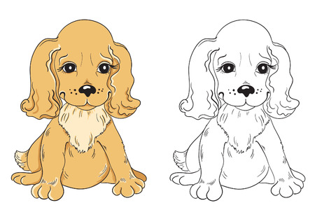 brown and black dog face: Coloring book with cartoon dog for children education  Illustration