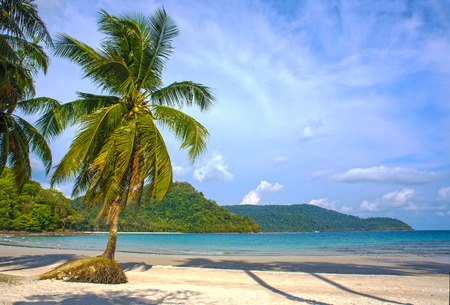 Untouched tropical beach in Thailand photo
