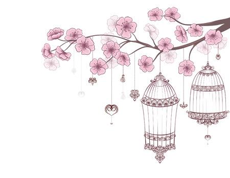 Frühlingsblumenhintergrund. Käfige von Vögeln auf Kirschzweig in der Blüte auf einem weißen. Standard-Bild - 30170986
