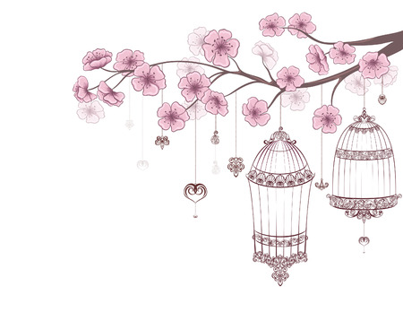 Spring floral background. Cages of birds on cherry branch in blossom isolated on a white.