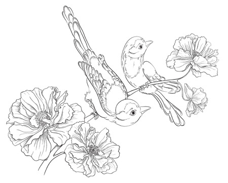 Two birds sitting on blooming roses  Flower background  Vector hand drawing