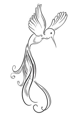 Croquis de colibri oiseaux de tatouage dessinés à la main Vecteurs