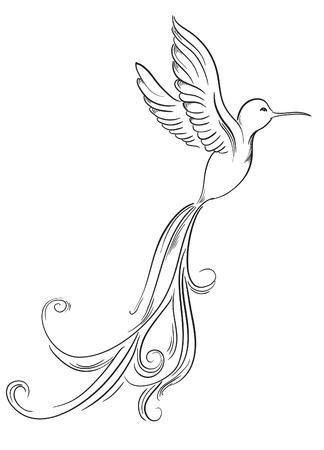 Croquis de colibri oiseaux de tatouage dessinés à la main