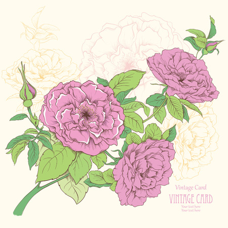rose silhouette: Vintage card with rose flowers  Hand drawn vector illustration
