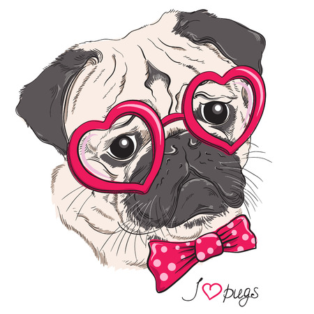 cute graphic: Fashion portrait of pug dog hipster in hearts glasses isolated on white. Vector hand drawn illustration Illustration